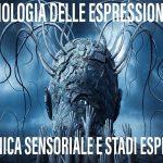 Tecnologia delle Espressioni - Meccanica sensoriale