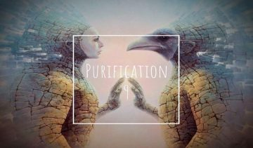 Purification 9